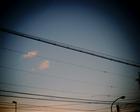 基本、空に向かって撮った写真